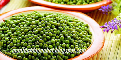 Khasiat Kacang Hijau Untuk Kesehatan Dan Kecantikan