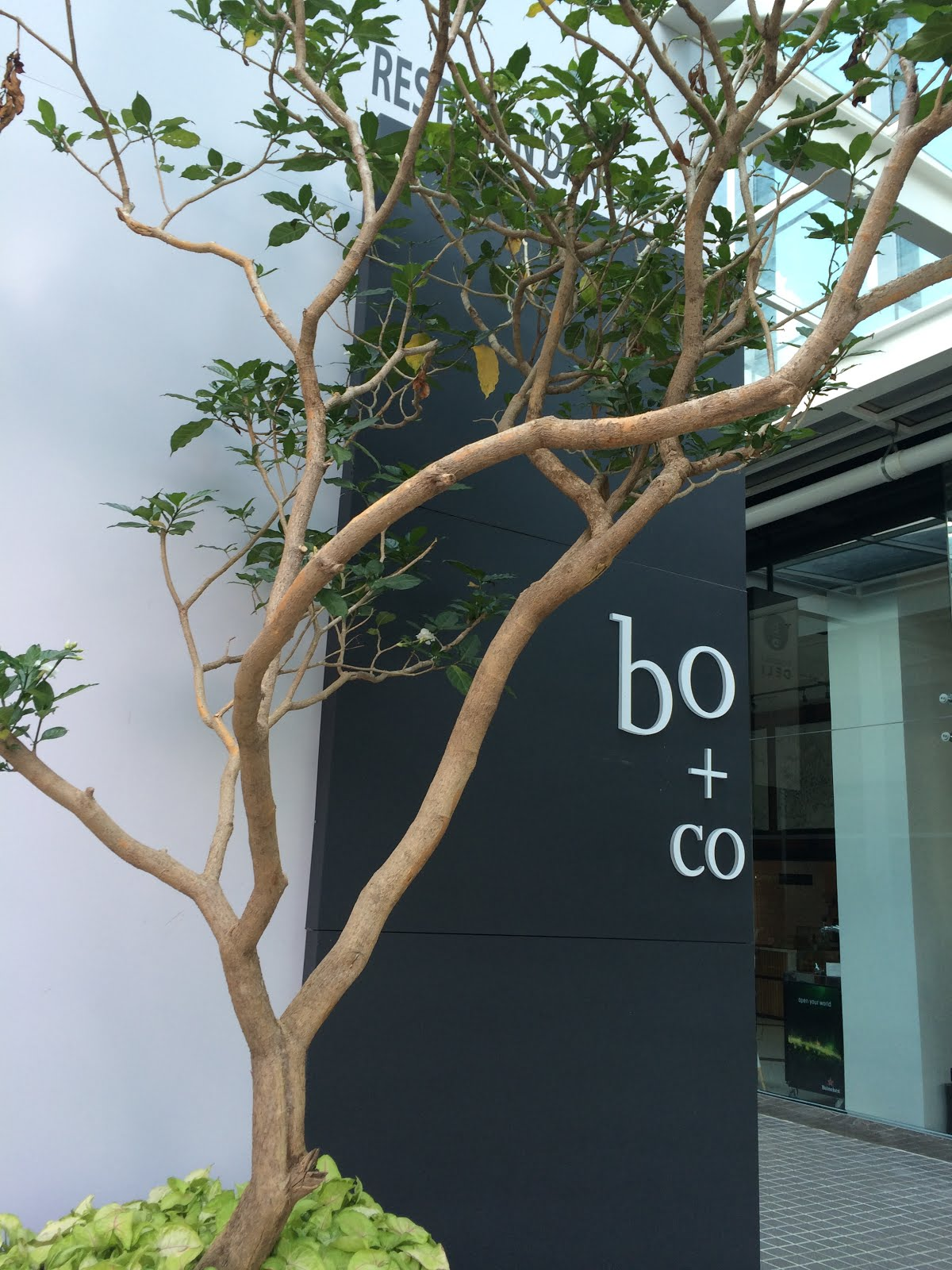 Botanica + Co @ Bangsar South