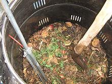 Composting%2Btea.jpg
