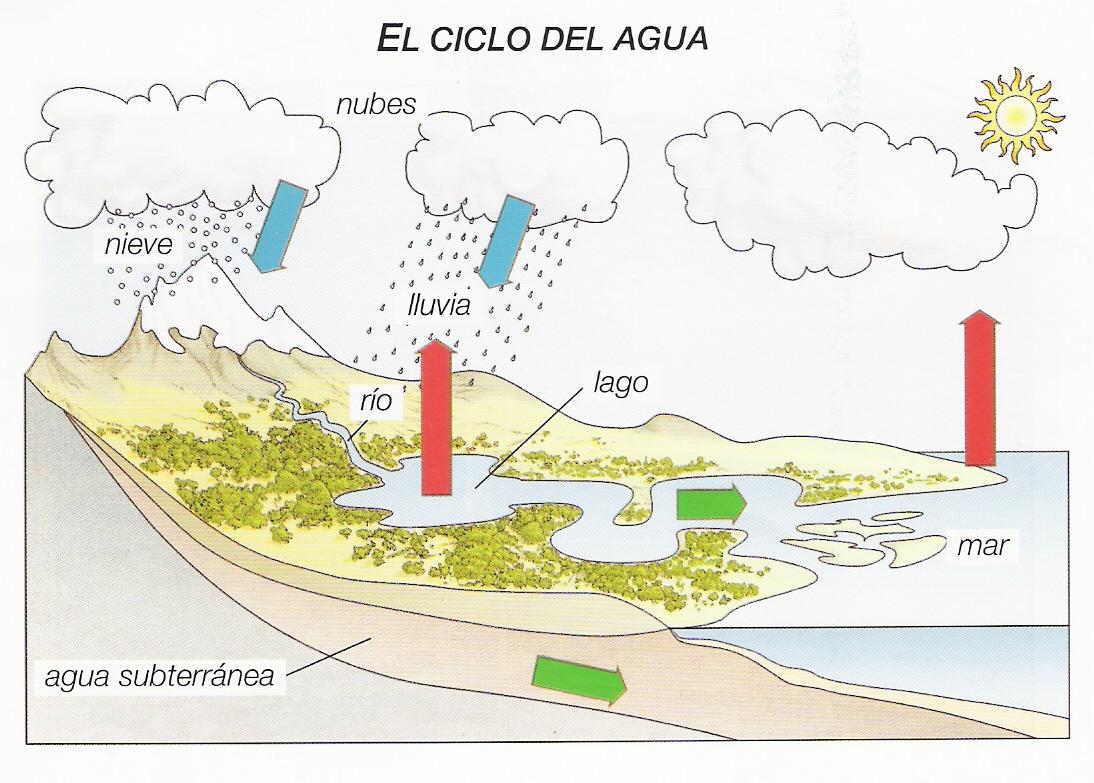 Dibujos Para Colorear Del Ciclo Del Agua Para Ninos: Nuestra Nave TIC: Dibujo Y Video Del Ciclo Del Agua