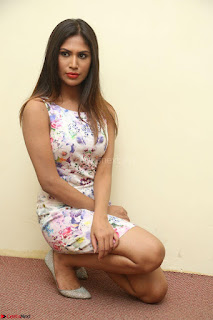 Nishi Ganda stunning cute in Flower Print short dress at Tick Tack Movie Press Meet March 2017 102.JPG