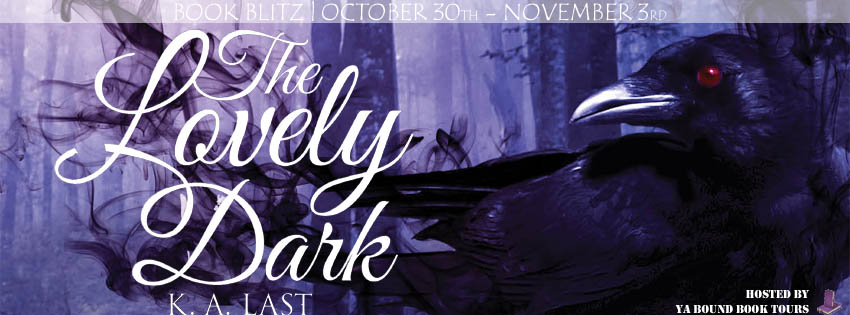 The Lovely Dark Book Blitz