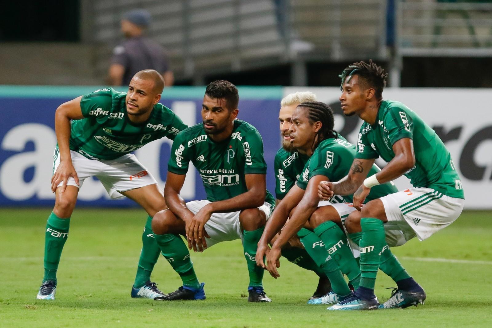 Como Assistir Palmeiras X Bragantino Ao Vivo 28 01 2018