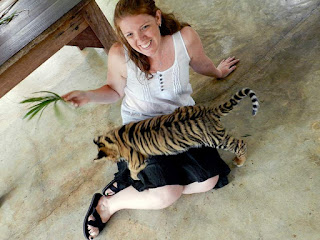 Tiger Kingdom vs Tiger Temple: Baby Tiger