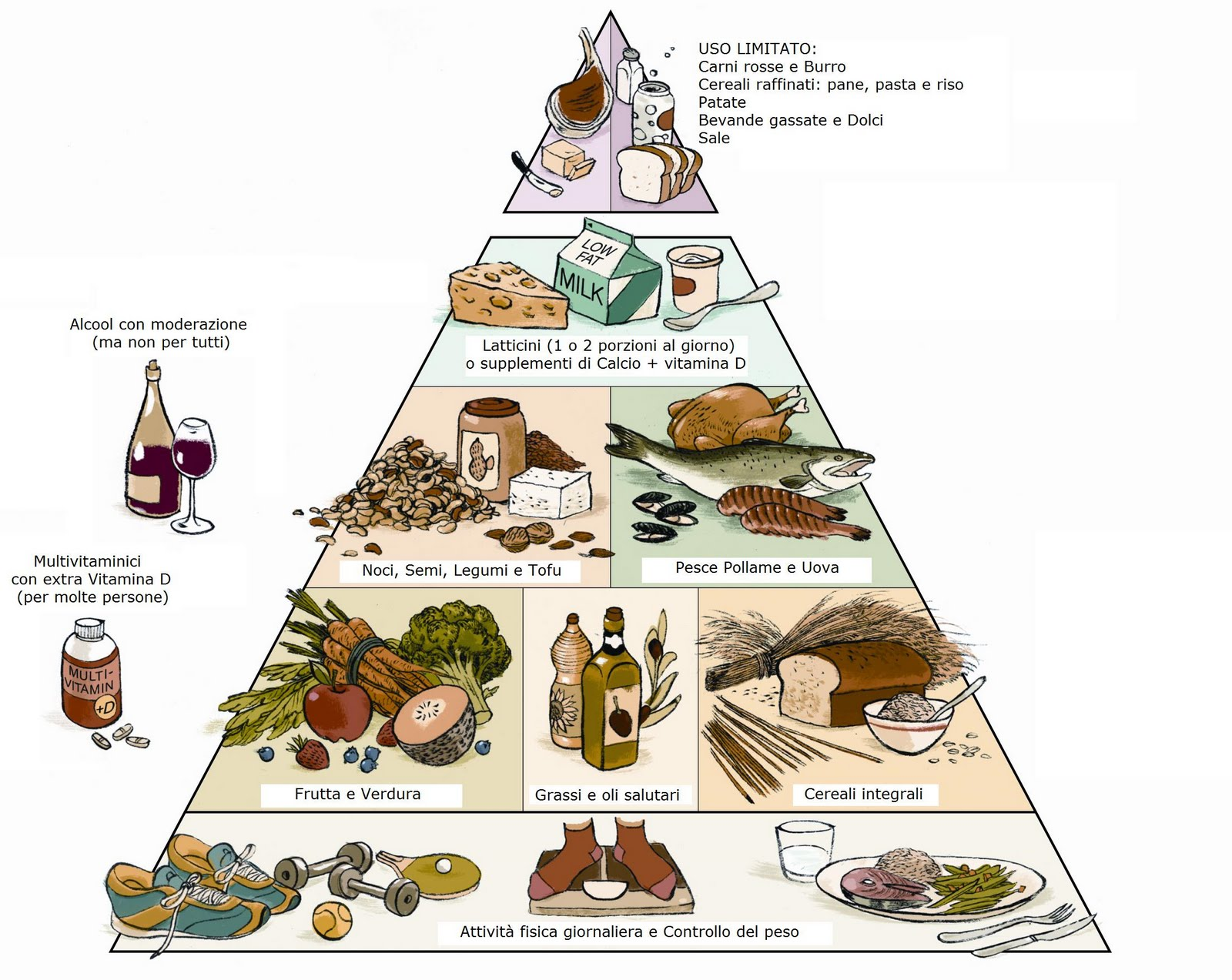 vitamine brucia grassi sane