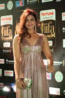 Telugu Actress Aarthi in Deep Neck Backless Golden Gown at IIFA Utsavam Awards 2017 Exclusive 28.JPG