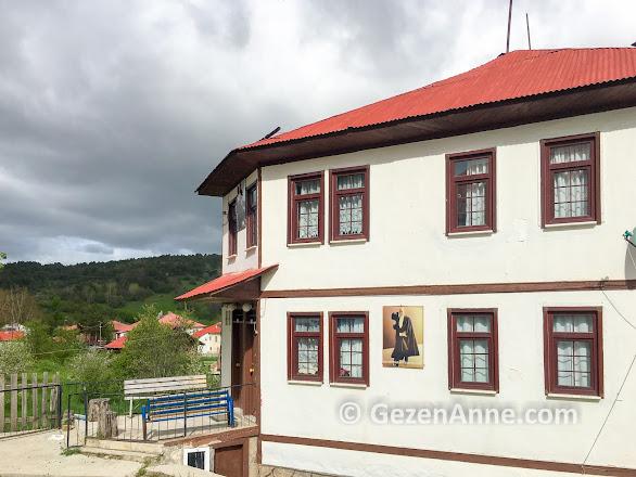 Yeşilce köyünün Atatürk resmi ile donatılmış evleri, Mesudiye Ordu