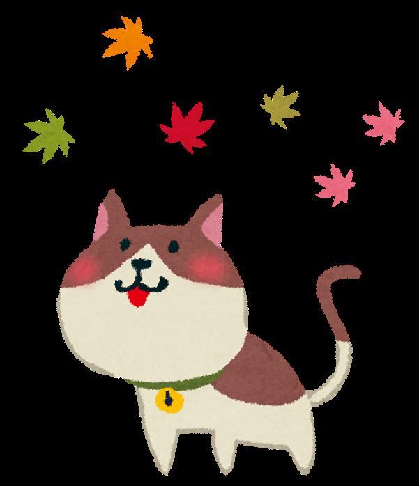 紅葉のイラスト猫 かわいいフリー素材集 いらすとや