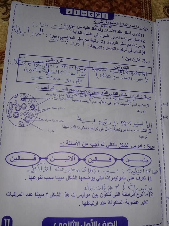 ٣ امتحانات احياء للصف الاول الثانوي ترم أول بالنظام الجديد 11