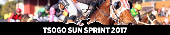 Tsogo Sun Sprint 2017 - Best Bets - Betting - Final Field - Winning Form - Hollywoodbets