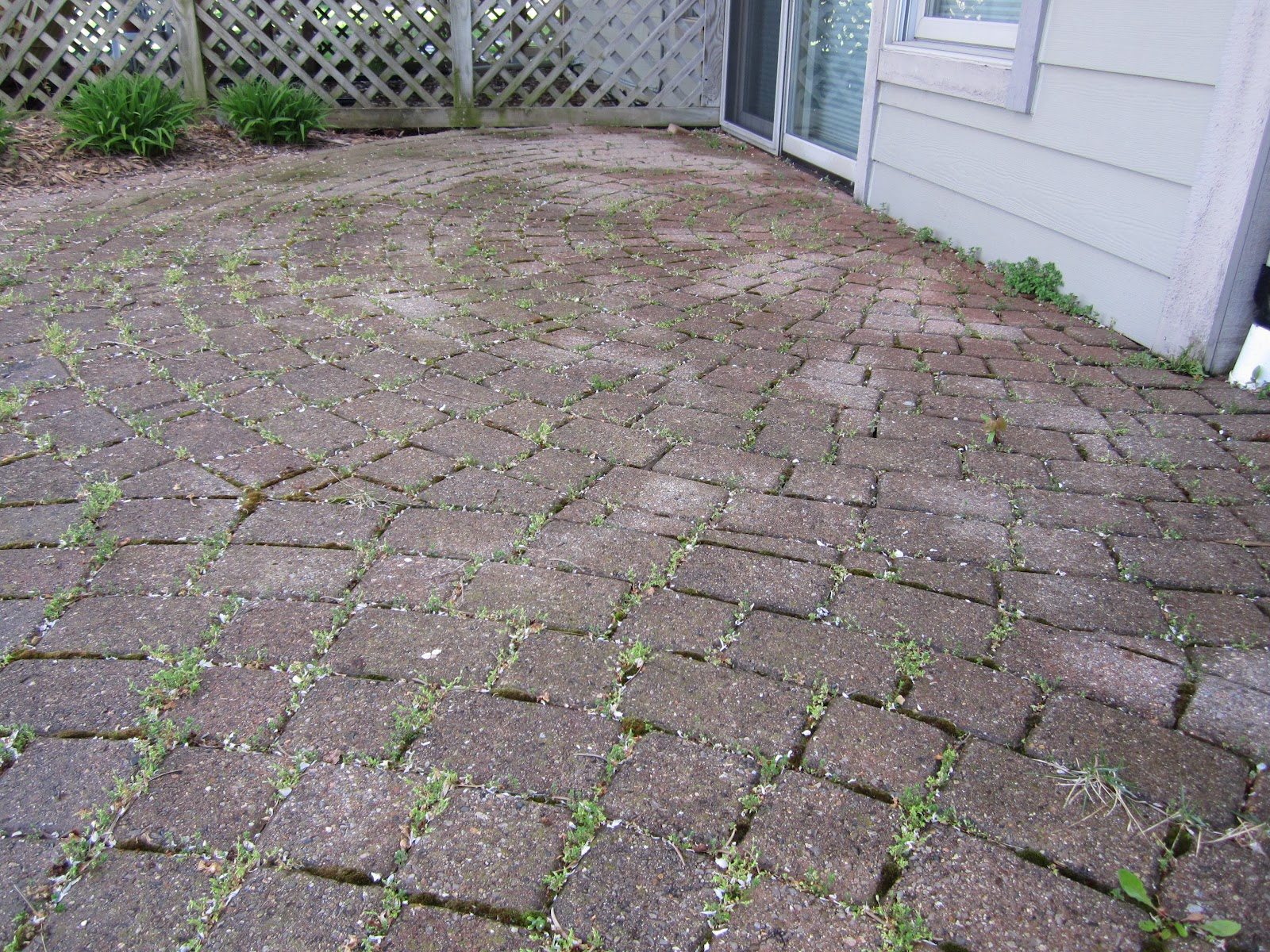 Brick Doctor Bill Pavers Patio Repair