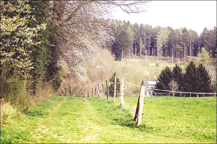 Wandern, Hagen, Hiking