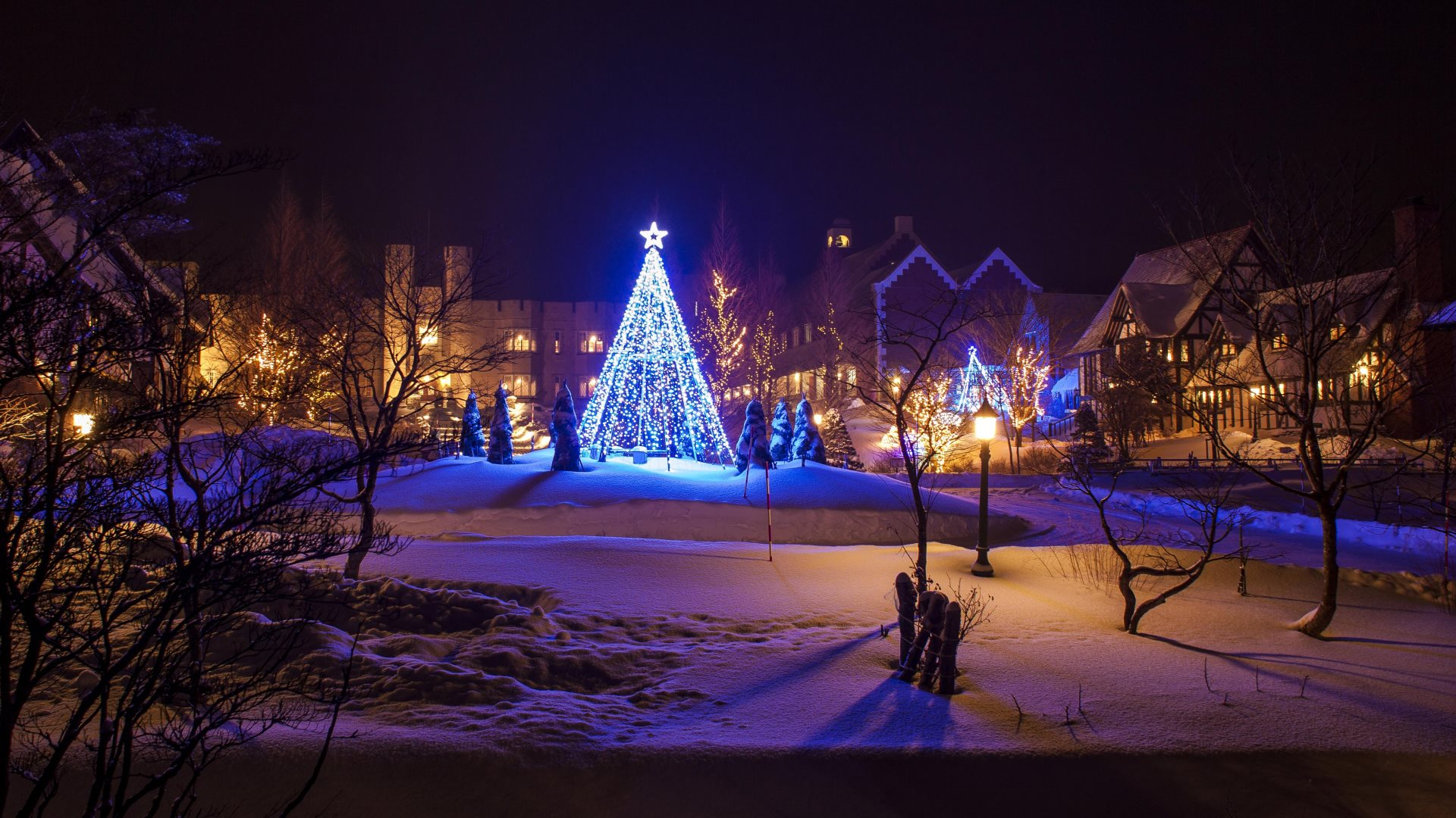 Image 10 into the dream city with wonderful lights and christmas tree