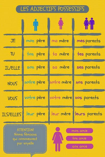 Zaimki przymiotne dzierżawcze - gramatyka 1 - Francuski przy kawie