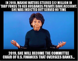 Criminal%2BCongress-Maxine.jpg