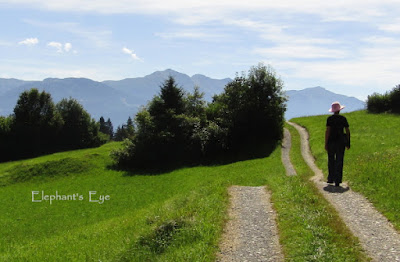 Walking from Flims, Graubunden