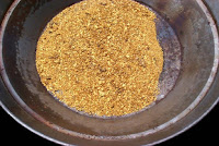 gold panning in usa