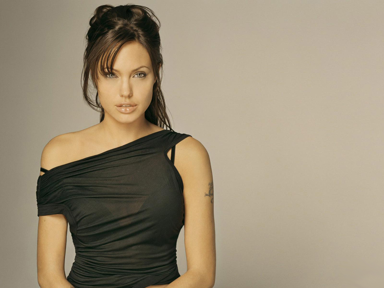 Star 10 Sexy Angelina Jolie Hd Wallpapers-7333