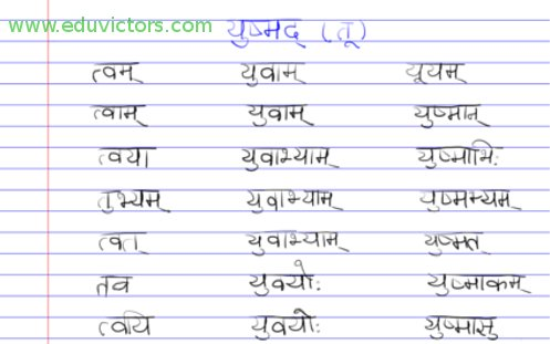 CBSE Papers, Questions, Answers, MCQ    : Class 6/7/8/9/10