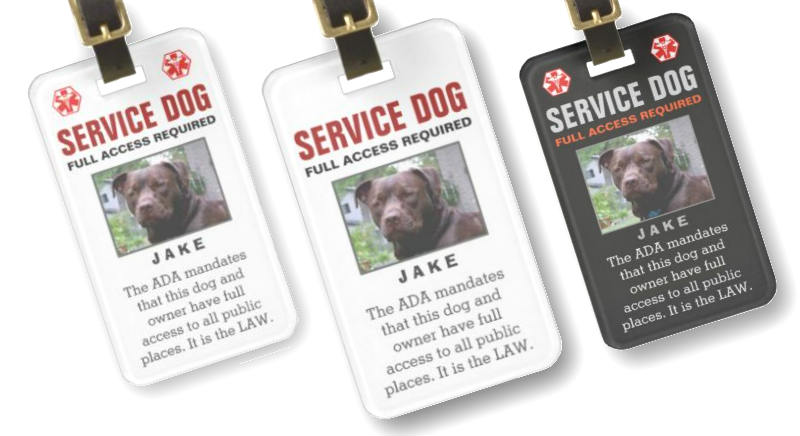 high quality service dog photo tags you can customize medical