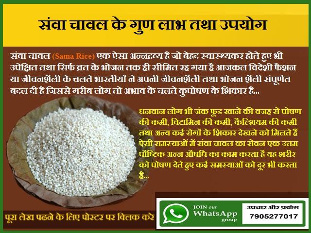 संवा चावल के गुण लाभ तथा उपयोग