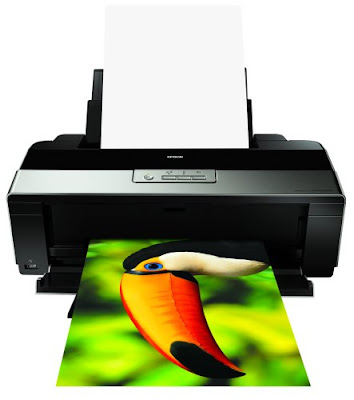 Create amazing panoramas with included roll paper support Epson Stylus Photo R1900 Driver Downloads