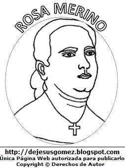 Rosa Merino para colorear pintar, dibujo de Rosa Merino para niños. Dibujo de Rosa Meri