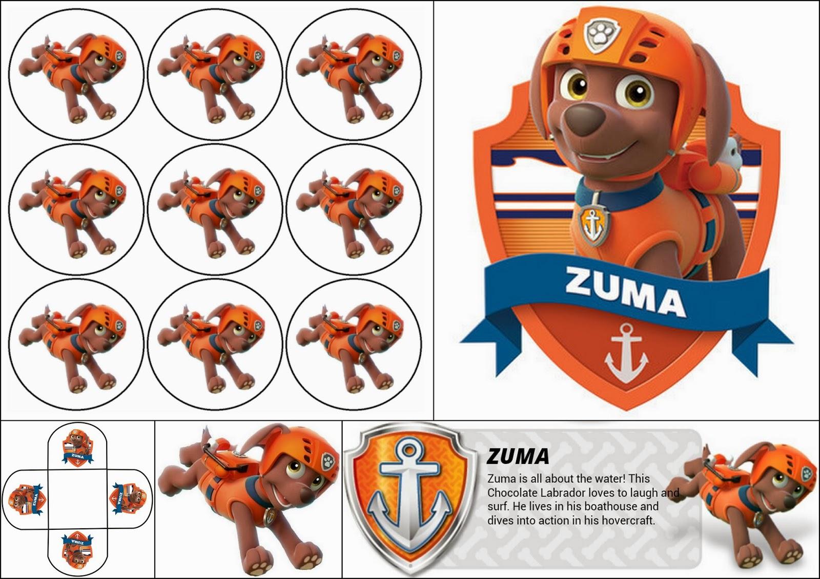 Paw Patrol o Patrulla Canina: Divertido Mini Kit de Zuma para Imprimir Gratis.