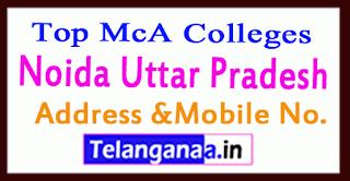 Top MCA Colleges in Greater Noida Uttar Pradesh