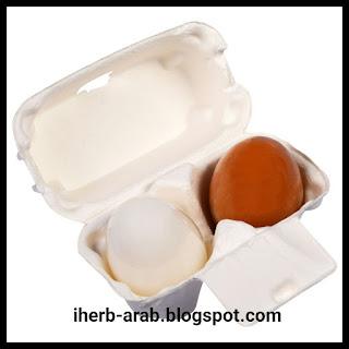 صابونة البيض من الداخل