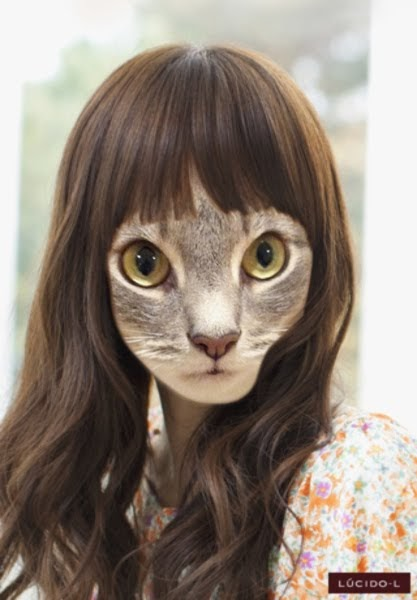 cat haircut styles noa amp ash we are kittens forever new hairstyles 2409 | photo 2