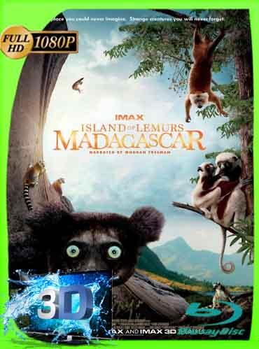 Island Of Lemurs Madagascar (2014) Latino Full 3D SBS 1080P [GoogleDrive] dizonHD