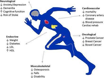 Physical Wellness Khouri