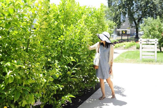 http://www.chriskiki.com/2017/06/visiting-gardens-at-anapa-valley.html