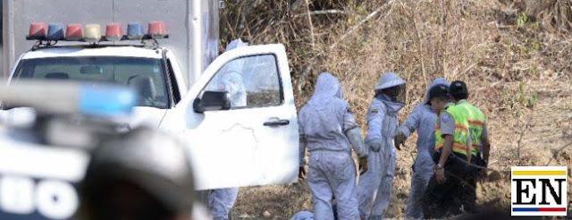 abejas asesinas matan hombre guayaquil