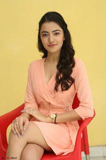 Rukshar Mir in a Peachy Deep Neck Short Dress 068.JPG