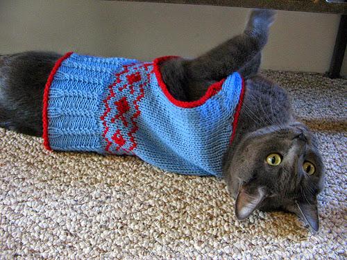 mascotas, prendas, crochet, ganchillo, patrones, instrucciones