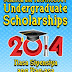 2014 DOST Science & Technology (RA 7687/MERIT) Undergraduate Scholarships Now Open!