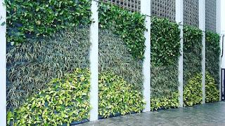 Taman Vertikal | Vertical Garden | jasataman.co.id IV