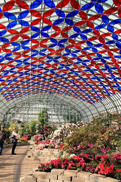 Brilliant blooms await in the Show Room at the Garfield Park Conservatory in Chicago.