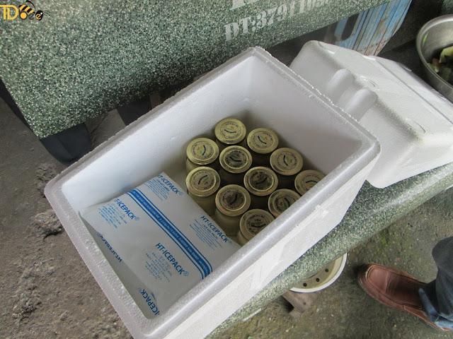 Mua sữa ong chúa ở cu chi TPHCM