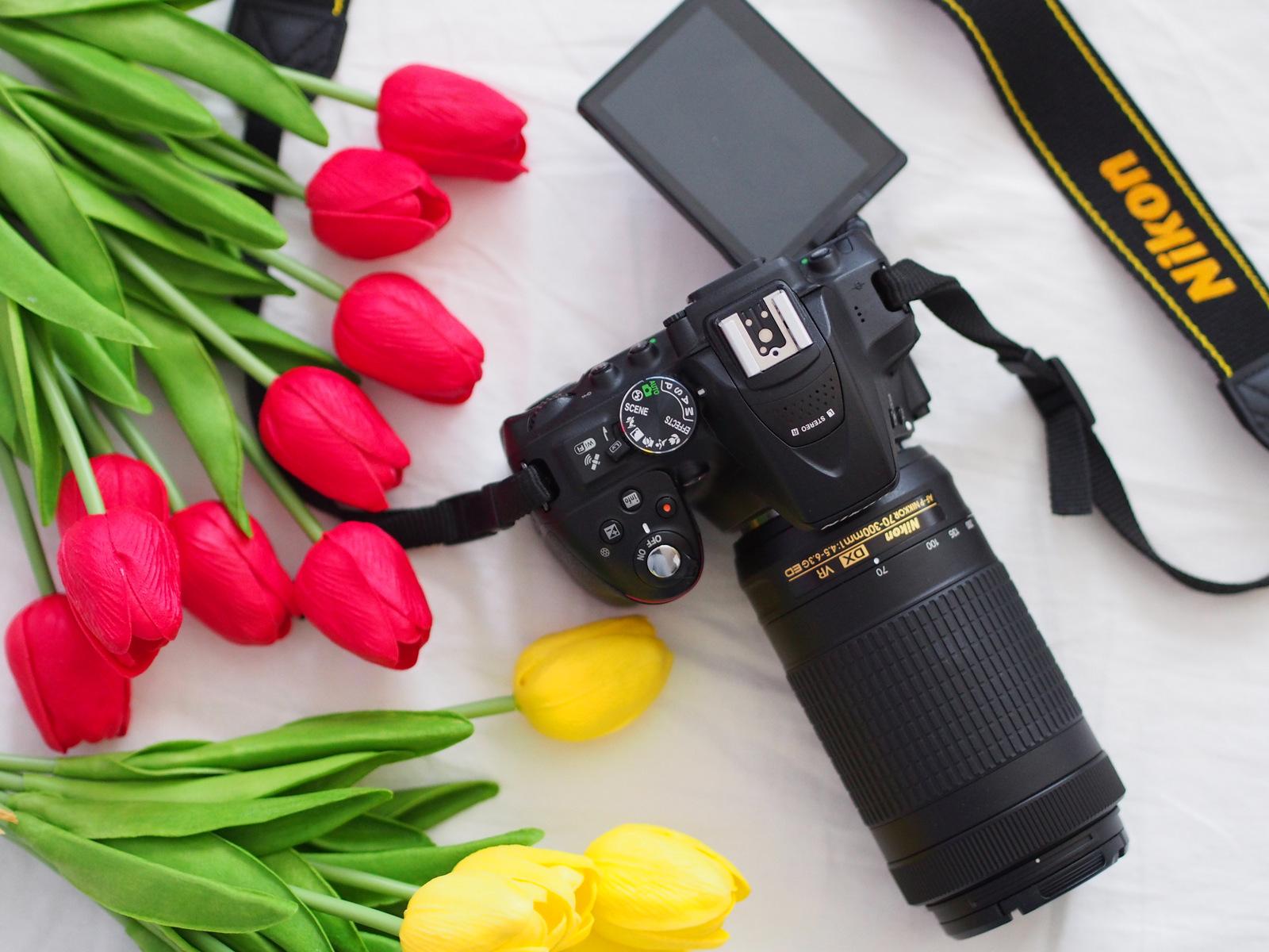 Nikon D5300 s objektívom 70-300 mm f/4.5-6.3  // moje hodnotenie, výhody, prvé dojmy a ukážky fotografií