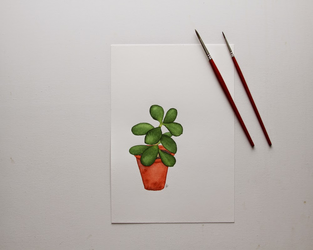 crassula, succulent, watercolor, painting