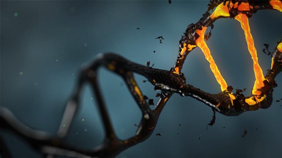Download Makalah Pembelajaran Kimia Doc