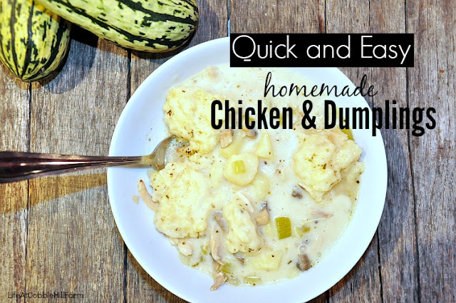 Chicken and Dumplings that are quick, easy and made all in one-pot!