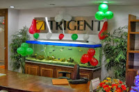 Trigent-Software-off-campus-for-freshers