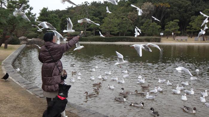http://border-polly.blogspot.jp/2016/02/blog-post_11.html