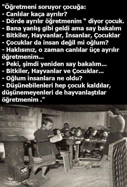 öğretmen, öğrenci, sınıf, okul, soba, yokluk, yoksulluk, eğitim