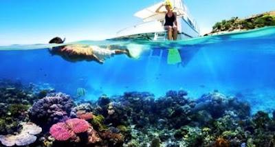 8 Destinasi Spot Diving Dan Snorkeling Terbaik Di Kepulauan Seribu Jakarta