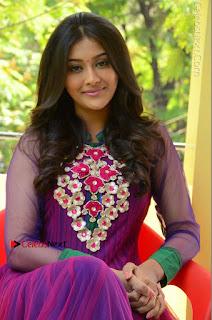Actress Pooja Jhaveri Latest Stills in Purple Salwar Kameezt at Dwaraka Success Meet  0213.JPG